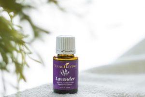 YL Lavender 500×334