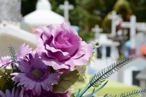 cementerio-948048 cropped